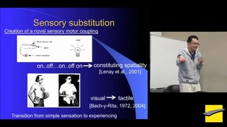 PHITECO 2013 - Co-development of communication system in perceptual crossing