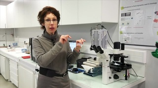 Caractérisation des propriétés des microcapsules
