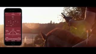 Equisense, au carrefour entre équitation et innovation