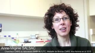 Interview d'A.V. Salsac, médaille de bronze CNRS