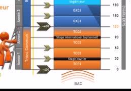La structure des études à l'UTC