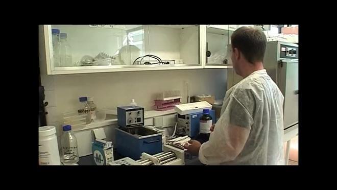 BMBI - Biomécanique et Bio-ingénierie