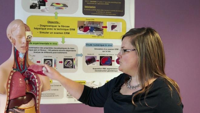 Identification expérimentale et numérique des propriétés mécaniques des tissus biologiques