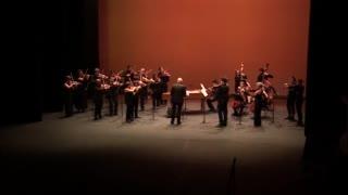 Orchestre Col'legno - 1ère partie